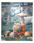 Julie Dawn Cole (Willy Wonka & The Chocolate Factory) - Genuine Signed Autograph 8108